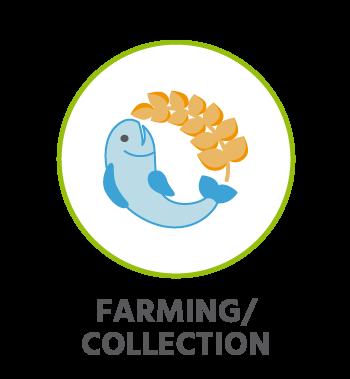 CircularLoops farming